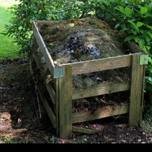 observe compost