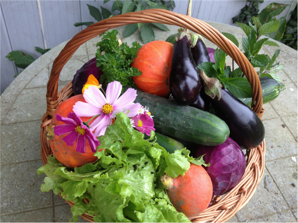 """Featured image for """"High Yield Crops for Permaculture Gardens"""""""