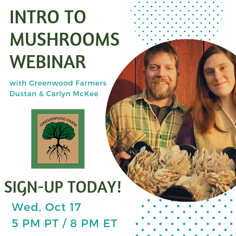 Intro to Mushrooms