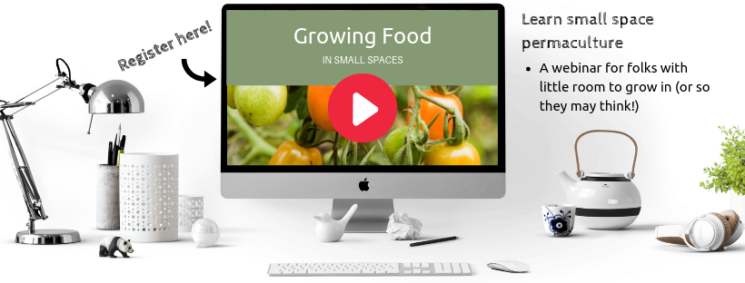 https://growmyownfood.com/growing-food-in-small-spaces-webinar/