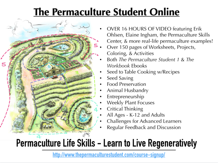 permaculture student k-12 online