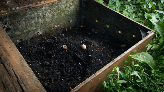 how to compost (an overview)
