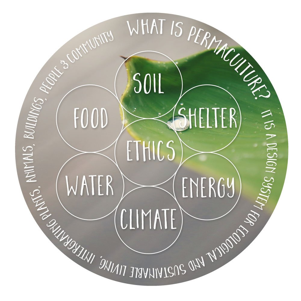 what is permaculture? principles