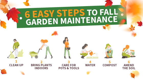 fall-garden-maintenance